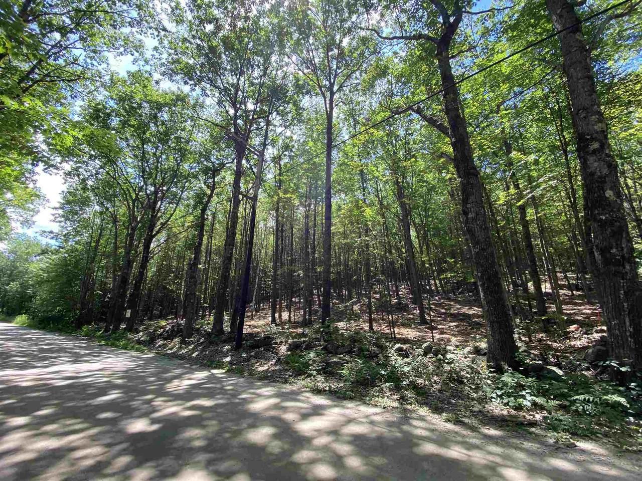 Lot 6-10 Raccoon Hill Road - Photo 1