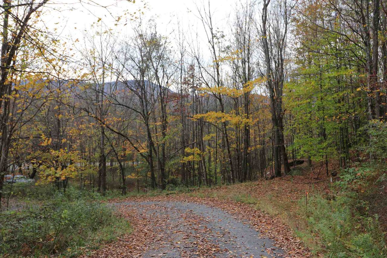 915 Freeman Hill Road - Photo 1