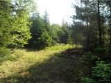 Lot 1 Birch Road - Photo 2