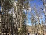 Lot 19 Province Lake Road - Photo 4