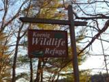 15 E Buzzell Ridge Road - Photo 37