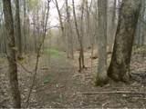 272 Twenty Acre Wood Road - Photo 28