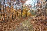 272 Twenty Acre Wood Road - Photo 5