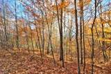 272 Twenty Acre Wood Road - Photo 6