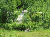 290 Bullwinkle Road Drive - Photo 3