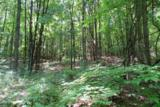 360 Pease Mountain Road - Photo 2