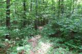 360 Pease Mountain Road - Photo 3