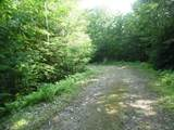 Lot#3 Middle Route Road - Photo 8
