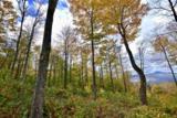 779 Bear Creek Lane - Photo 11