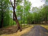 0 Bear Creek Lane - Photo 11