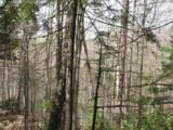 001 Moretown Mountain Road - Photo 9