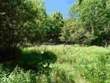 TBD Snake Mountain Road - Photo 11