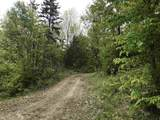 209 Spruce Drive - Photo 13