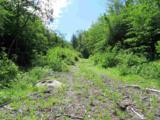 0 Stewart/Foss Mountain Road - Photo 8