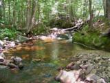 590 Wild Meadow Road - Photo 34