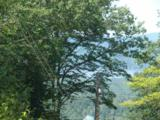 62 Knox Mountain Road - Photo 1