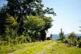 1813B West Hill Road - Photo 5