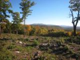 Dodge Pasture Road - Photo 11