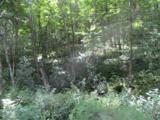 0 Twin Ponds Road - Photo 5