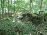 0 Twin Ponds Road - Photo 6