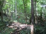 0 Twin Ponds Road - Photo 8