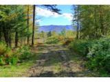Moose Run Lane - Photo 3