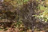 4 Sagamore Ridge - Photo 2