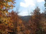 00 Furnace Flat Road - Photo 3