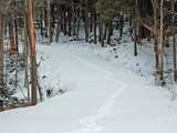 00 Slide Brook Drive - Photo 30