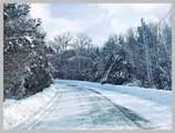 #49 Covered Bridge Road - Photo 8