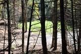 Lot 5 Finney Ridge - Photo 2