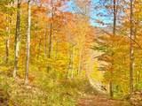 000 Leland Jones Trail - Photo 25
