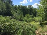 1563 Roxbury Mountain Road - Photo 18