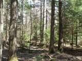 0 North Bear Swamp Road - Photo 10