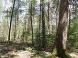 0 North Bear Swamp Road - Photo 11