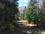 0 Hawk Rock Road - Photo 2