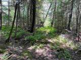 146 Winhall Hollow Road - Photo 6