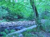 599 Bog Road - Photo 13