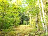 000 Putnam Forest Road - Photo 10