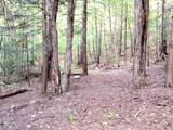 000 Putnam Forest Road - Photo 15