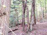 000 Putnam Forest Road - Photo 16