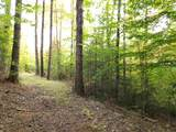 000 Putnam Forest Road - Photo 18