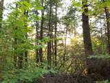 000 Putnam Forest Road - Photo 22