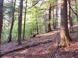 000 Putnam Forest Road - Photo 23