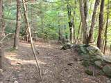 000 Putnam Forest Road - Photo 25
