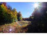 1531 Diggins Road - Photo 3