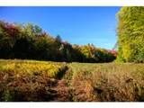 1531 Diggins Road - Photo 4