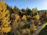 55 Alpine Drive - Photo 5