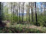 360 Cider Mountain Road - Photo 5