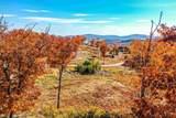 Granite Ridge Road - Photo 4